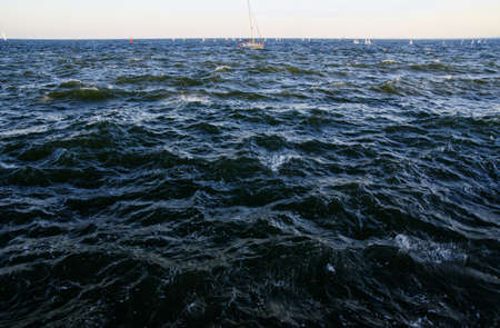 The small ship regatta in Gdynia Bay late afternoon on September 29, Poland