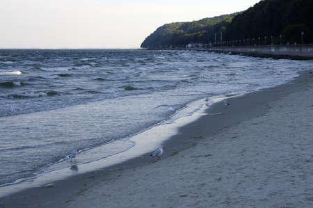 The beach in Gdynia city, Poland