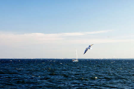 GDYNIA, POLAND: SEPTEMBER 29, 2017 - The small ship regatta in Gdynia Bay late afternoon on September 29, Poland