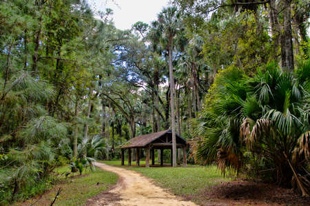 The recreation area in the Ocala National Forest located in Juniper Springs Florida
