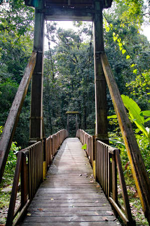 Hanging bridge leading to the Forest House (Maison de la Forêt) in Basse-Terre, Guadeloupe