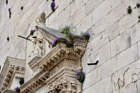 The flowers growing luxuriantly on the walls of the main church in Old Omis city, Dalmatia, Croatia
