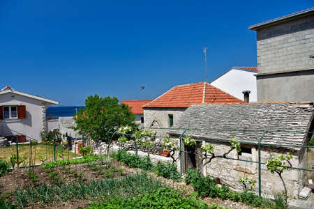 PRIMOSTEN, CROATIA - MAY 2, 2019 - Small house gardens and vineyards cultivated by inhabitants of famous and beautiful Primosten town in Dalmatia - popular tourist destination in Dalmatia. Croatia Editorial