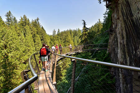 VANCOUVER, BRITISH COLUMBIA, CANADA, MAY 31, 2019: Visitors exploring the Capilano Cliff Walk through rainforest. The popular suspended walkways juts out from the granite cliff face 230 meters above the Capilano River. Editorial