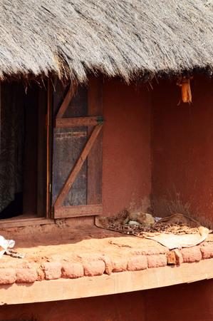 Séchage de manioc