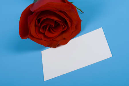 Note and red rose isolated blue