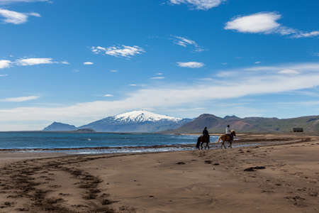 Beautiful Iceland landscape with white glacier cap of Snaefellsjokull volcano on the horizon. Two horsemen riding along the beach on a bright sunny day with clear sky. Stock Photo