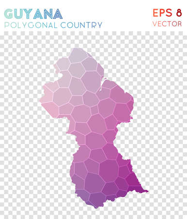Guyana polygonal map, mosaic style country. Indelible low poly style, modern design. Guyana polygonal map for infographics or presentation.