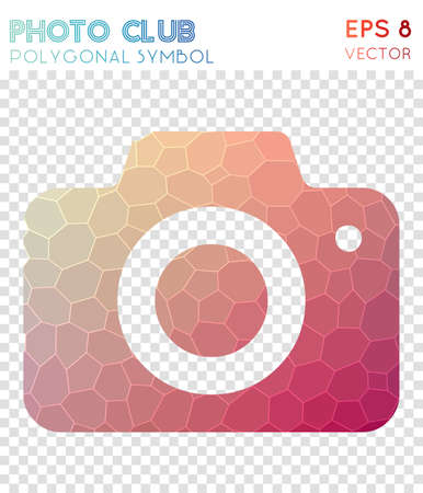 Photo polygonal symbol. Admirable mosaic style symbol. Tempting low poly style. Modern design. Photo icon for infographics or presentation. Illustration