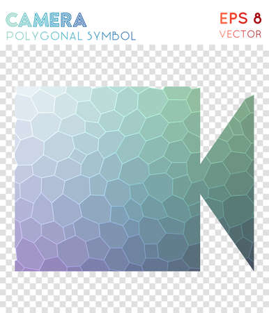 Videocam polygonal symbol. Bizarre mosaic style symbol. Exceptional low poly style. Modern design. Videocam icon for infographics or presentation.