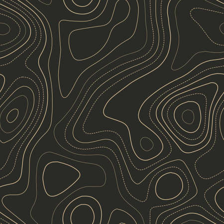 Topographic map lines. Admirable topography map. Seamless design. Fantastic tileable isolines pattern, vector illustration.
