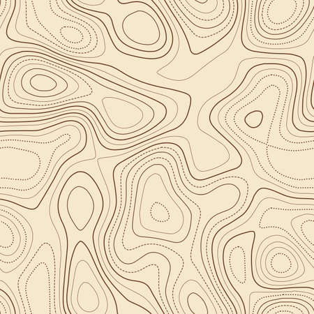 Topographic map lines. Actual topographic map. Seamless design, unique tileable isolines pattern. Vector illustration.