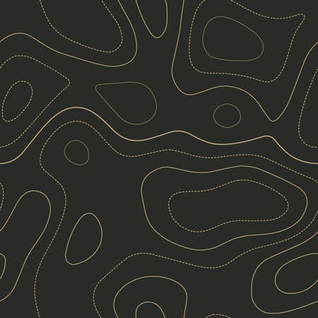 Amazing topography. Admirable topography map. Seamless design. Classy tileable isolines pattern, vector illustration. Banque d'images - 124696628