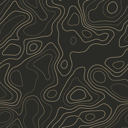 Topographic map background. Actual topography map. Seamless design. Classy tileable isolines pattern, vector illustration. Ilustração
