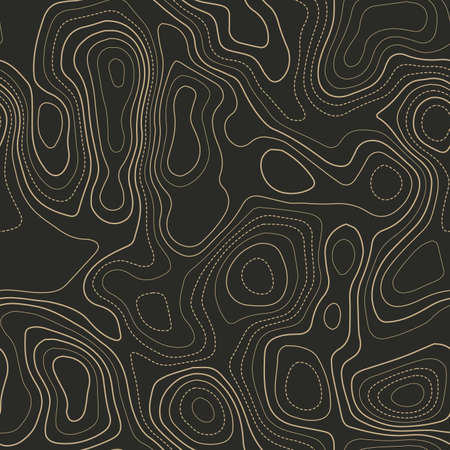 Terrain topography. Actual topography map. Seamless design. Eminent tileable isolines pattern, vector illustration.