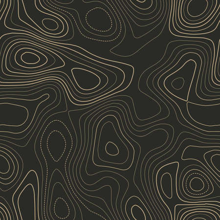 Topographic map lines. Actual topography map. Seamless design. Unique tileable isolines pattern, vector illustration.
