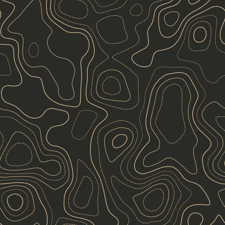 Terrain topography. Actual topography map. Seamless design. Dazzling tileable isolines pattern, vector illustration.