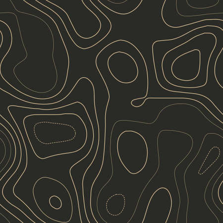 Topographic map background. Admirable topography map. Seamless design. Exotic tileable isolines pattern, vector illustration.