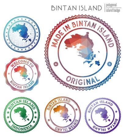 Bintan Island badge. Colorful polygonal island symbol. Multicolored geometric Bintan Island set. Vector illustration.