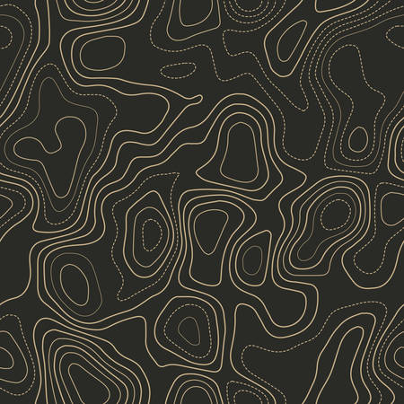 Topographic map background. Actual topography map. Seamless design. Delicate tileable isolines pattern, vector illustration.