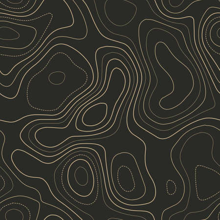 Terrain topography. Actual topography map. Seamless design. Ravishing tileable isolines pattern, vector illustration.