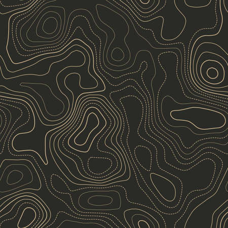 Topographic map. Actual topography map. Seamless design. Fancy tileable isolines pattern, vector illustration.