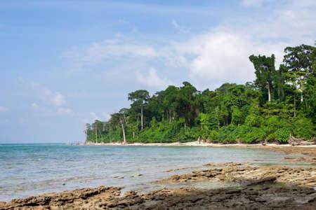 Coast at Havelock island. Andamans. India. Green lush torpical forest and the sea at Andaman Islands, India.
