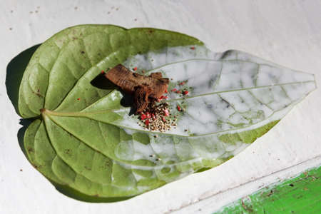 Betel in Myanmar. Made with areca nut, betel leaves, dried tobacco leaves and slaked lime paste.