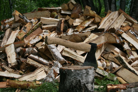 The axe on the background of a pile of wood in green forest