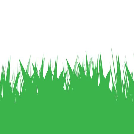 Green grass natural background. Lawn edging ecology