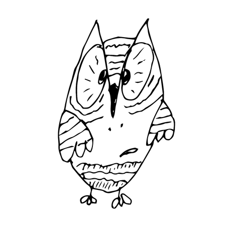 surprisingly: Strange funny surprised owl line art hand drawing. Graphic bird owl. Vector owl. Animated owl style. Comic book owl character.