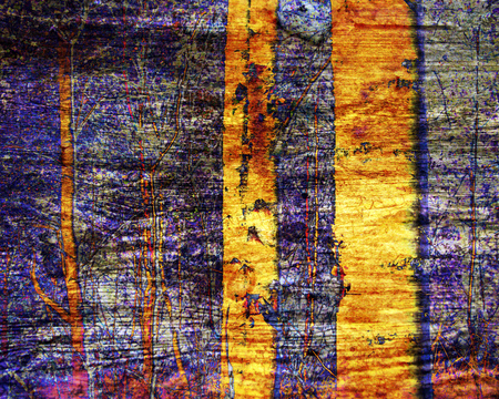 Abstract birch trees in woods. Digital art with overlay , blends and textures in gold, purple, orange. Great as a stand alone background, scrapbooking, cover, card, stationery and for products.
