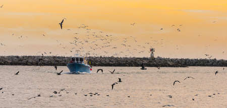 Fishing Boat in Bay with Birds at Sunset Stock Photo