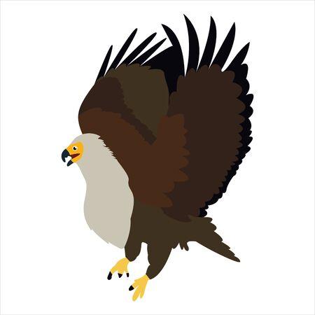 Personnage de dessin animé mignon animal aigle clip art oiseau illustration