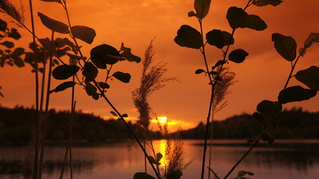 The Sunset with lake And Orange Sky.