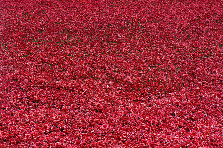 cummins: LONDON - OCTOBER 17, 2014: Over 100,000 people have bought ceramic poppies from the Tower of Londons art installation that pays tribute to British and Commonwealth soldiers killed in the WW1