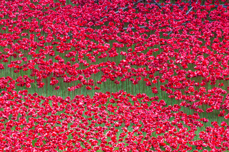 LONDON - OCTOBER 17, 2014: Over 100,000 people have bought ceramic poppies from the Tower of Londons art installation that pays tribute to British and Commonwealth soldiers killed in the WW1