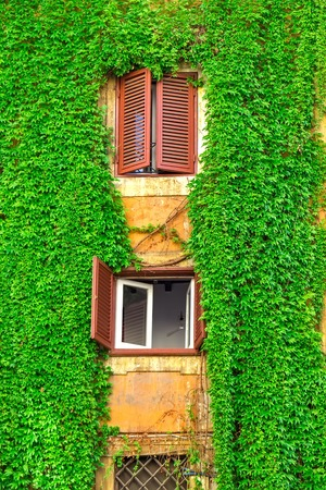 Facade of an old building in Rome, covered by ivy.