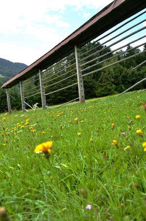grassfield: Hayrack in grassfield Stock Photo