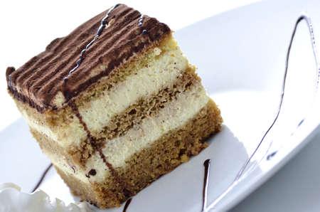 A dessert of tiramisu with chocolate served on a white plate .  photo