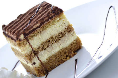 tiramisu: A dessert of tiramisu with chocolate served on a white plate .  Stock Photo