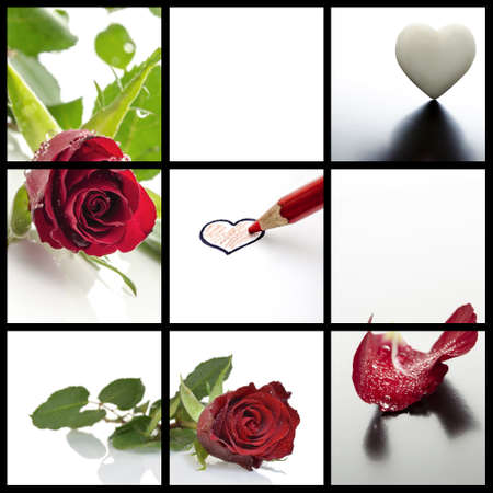 Valentines day collage- a set of five photos of roses and hearts  photo