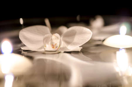 Orchid flower and candles floating on the water  photo