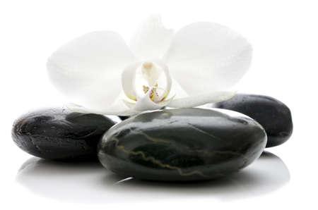 obrero: Flor de la orqu�dea en la parte superior de basalto piedras zen aisladas sobre fondo blanco