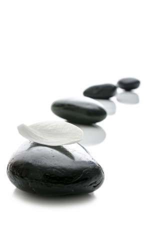 Zen stones in a row with white petal on the front one  Isolated over white background  Stock Photo - 17899313