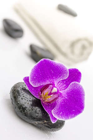 basalt: Violet orchid flower on a spa stone  Massage stones and towel in background