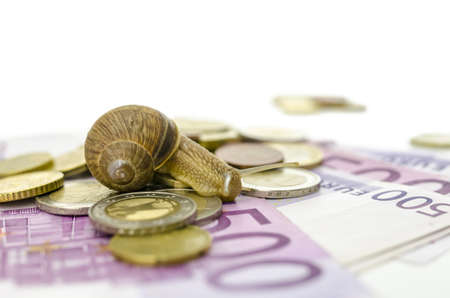 sluggish: Garden snail sitting on Euro banknotes and coins. Stock Photo