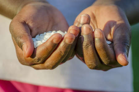 African girl hands holding rice. photo