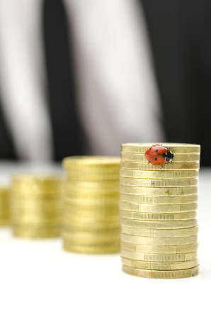 Growing stack of Euro coins with ladybug on the tallest one. Concept of financial crisis recovery. Stock Photo - 21263004