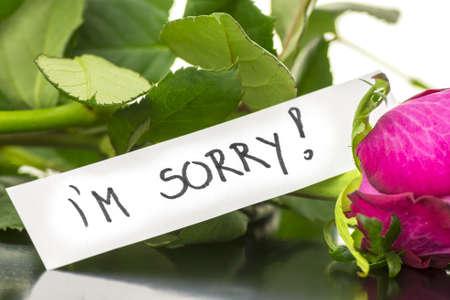 pardon: Je suis désolé un message sur une rose rose.